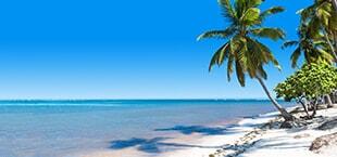 Wit zandstrand met wuivende palmbomen in Dominicaanse Republiek