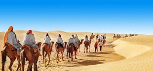 Woestijn en kamelen met mensen in Marokko