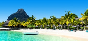 Lichtblauwe zee grenzend aan het strand met palmbomen op Mauritius