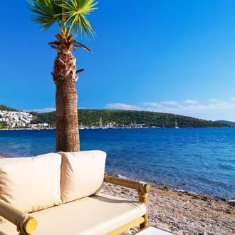 Strand met een palmboom en een witte bank