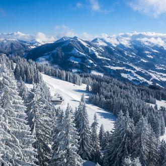 Bergen en dennenbomen in Westendorf Oostenrijk