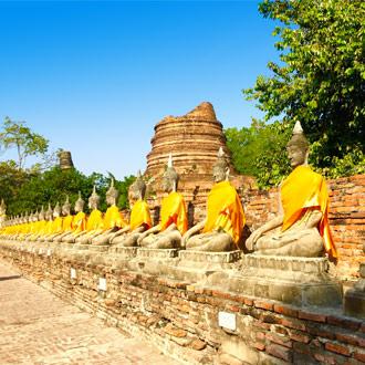 Boedhhas op een rij in Thailand