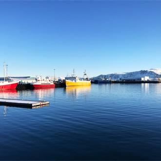 Boten in de haven van Reykjavik, IJsland