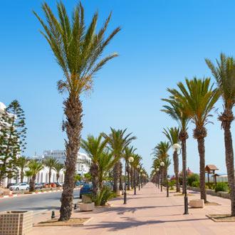 Boulevard met palmbomen en trottoir bij de Golf van Hammamet