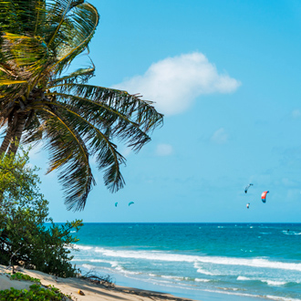 Cabarete strand met uitzicht op de azuur blauwe zee en wuivende palmbomen.