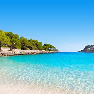 Blauwe baai met bomen strand Cala Gran in Cala d'Or