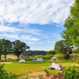 Een camping met tenten midden in de natuur in Limburg, Nederland