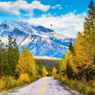 Bergweg door de Canadian Rockies met besneeuwde bergen op de achtergrond