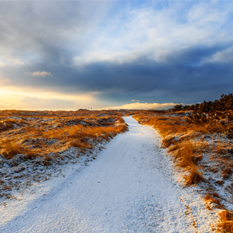Het zandstrand van Hvide Sande