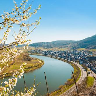 Duitsland-Uitzicht-over-de-Moselle-rivier-in-Rheinland-Pfalz
