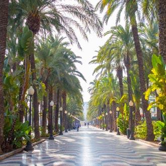 Boulevard met palmbomen Esplanada de Espana in Alicante