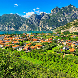 Gardameer en de wijngaarden in de buurt van Torbole stad, Italie, Europa