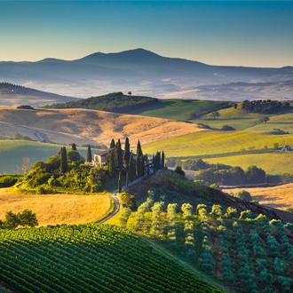 Groene bergen landschap in Toscane