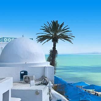 Wit huis met palmboom en zee Tunesie
