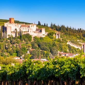 Kasteel Soave met wijngaarden op de voorgrond in Veneto