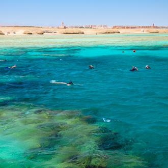 Een koraalrif waar mensen in snorken in Port Ghalib, Egypte