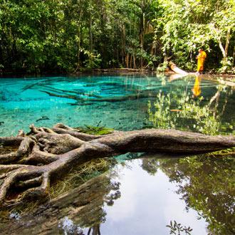Het moeras in Krabi