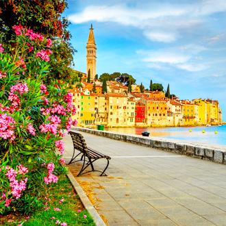 De oude stad Rovinj, Istrië, Kroatië