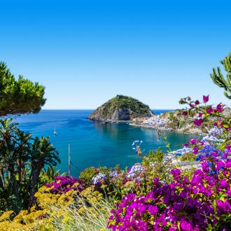 Kust bedekt met bloemen Ischia, Italië