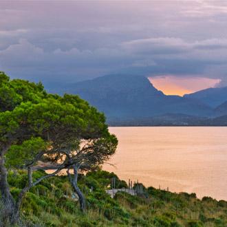 Landschap met bomen, zee en bergen s'illot
