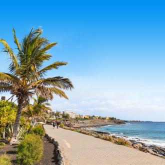 Weg langs de kustlijn, met palmbomen in Lanzarote.