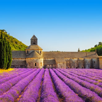 Paars lavendelveld met klooster op de achtergrond in Provence