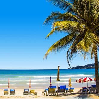 Ligbedjes op het strand van Patong Beach bij een palmboom
