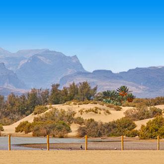 Foto van de duinen in Maspalomas met bergen op de achtergrond