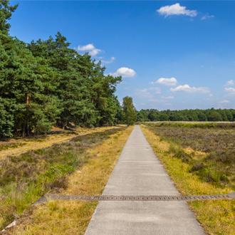 Fietspad in Nationaal Park Dwingelderveld, Drenthe