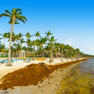 Ocean beach in bavaro, Punta Cana