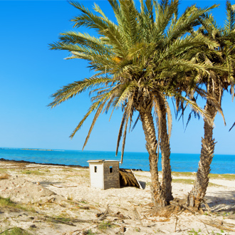 Strand met palmbomen in Djerba, Tunesië