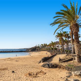 Strand met palmbomen, en de kustlijn, in Lanzarote.