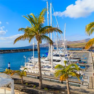 Jachten aangemeerd in de haven met palmbomen in Puerto Calero