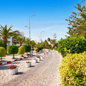 Stenen straatje met groene bomen in Port el Kantaoui Tunesië