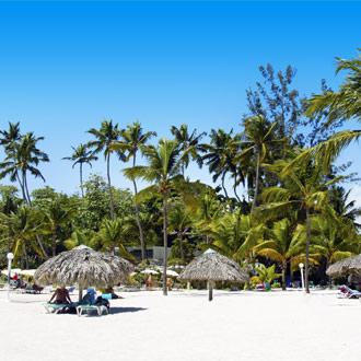Witte zandstrand van Boca Chica met palmbomen in de Dominicaanse Republiek