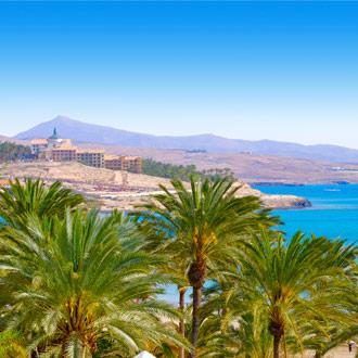 Palmbomen, zee en strand Costa Calma, Fuerteventura