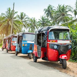 Tuktuk en palmbomen op Sri Lanka