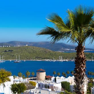 Uitzicht over Gümbet met palmboom en huisjes