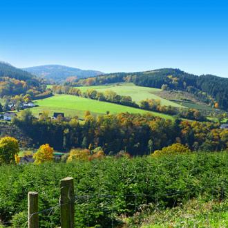 Groen beboste bergen in de zomer in Sauerland