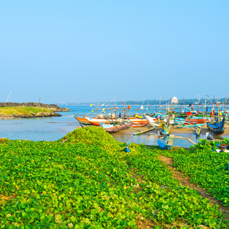 Vissersbootjes in haven van Hikkaduwa, Sri-Lanka