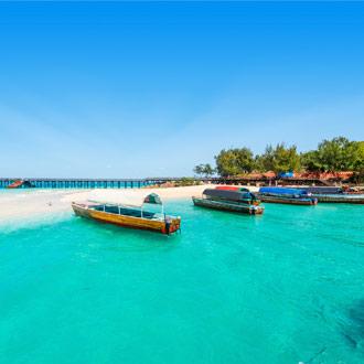 Boten bij de kust van Zanzibar, Afrika