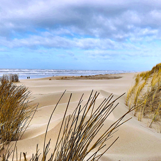 Foto van het strand en de zee op de achtergrond in Egmond Aan Zee