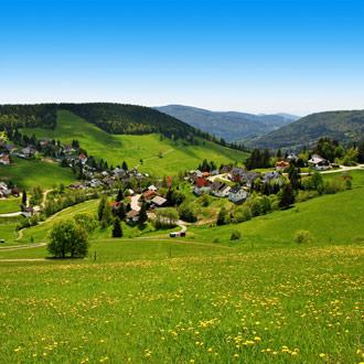 Groene berg met bomen en huisjes Schwarzwald