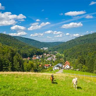 Panorama Landschap, groene bergen en geiten in de wei.