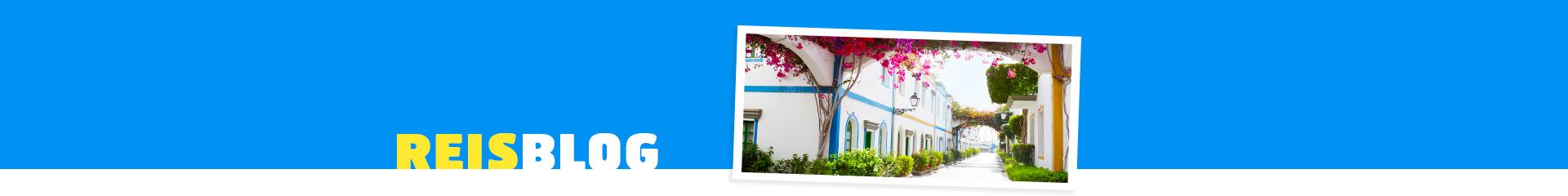 Witte huisjes op het eiland Gran Canaria, met prachtige roze bomen.