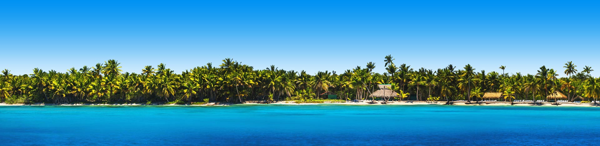 Strand vol met tropische palmbomen en een felblauwe zee aan de kust van de Dominicaanse Republiek