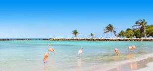 Reisadvies Curacao en Aruba