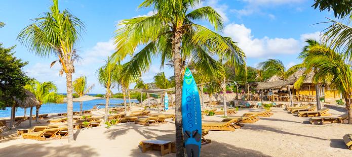 Tropisch strand met palmbomen op Curacao