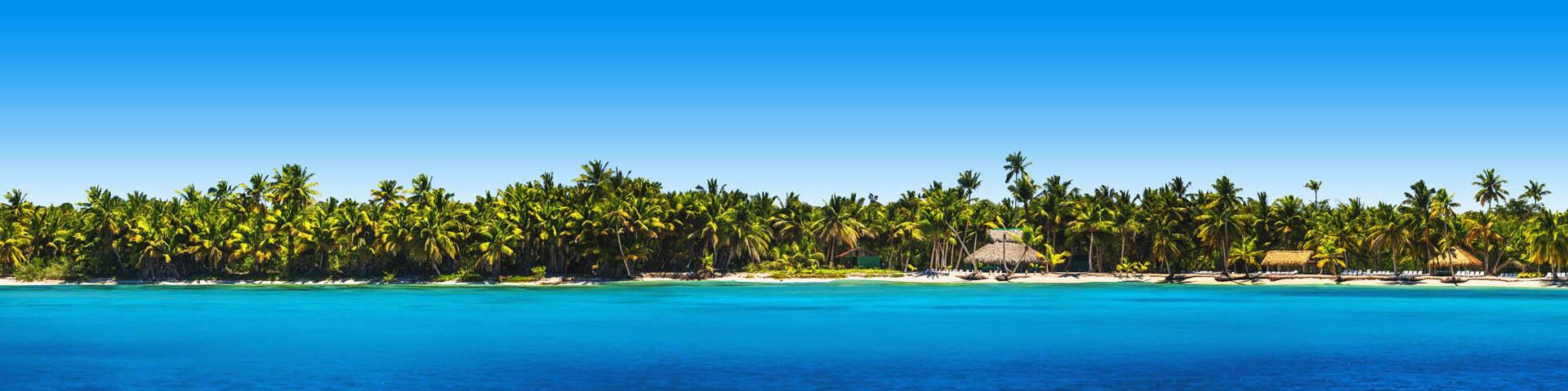 Strand met palmbomen en felblauwe zee Dominicaanse Republiek