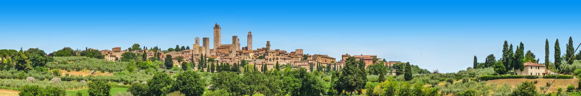 Uitzicht op druivenranken en een pittoresk stadje in Italië